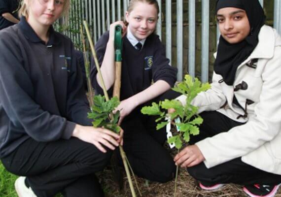 Versapak Tree Planting Initiative